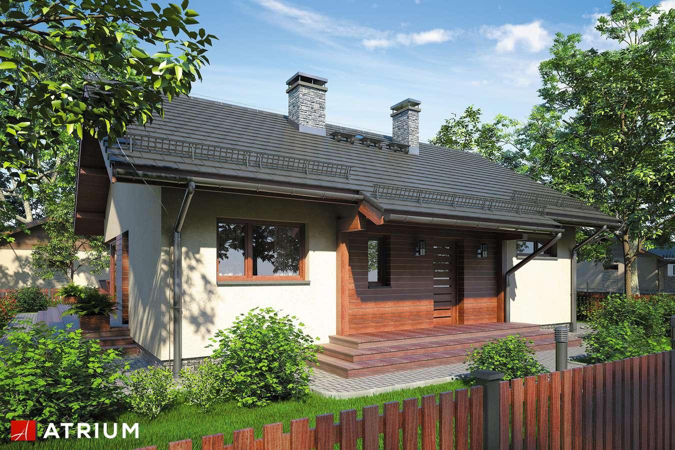 Projekty domów - Projekt domu parterowego AMBER IV - wizualizacja 1