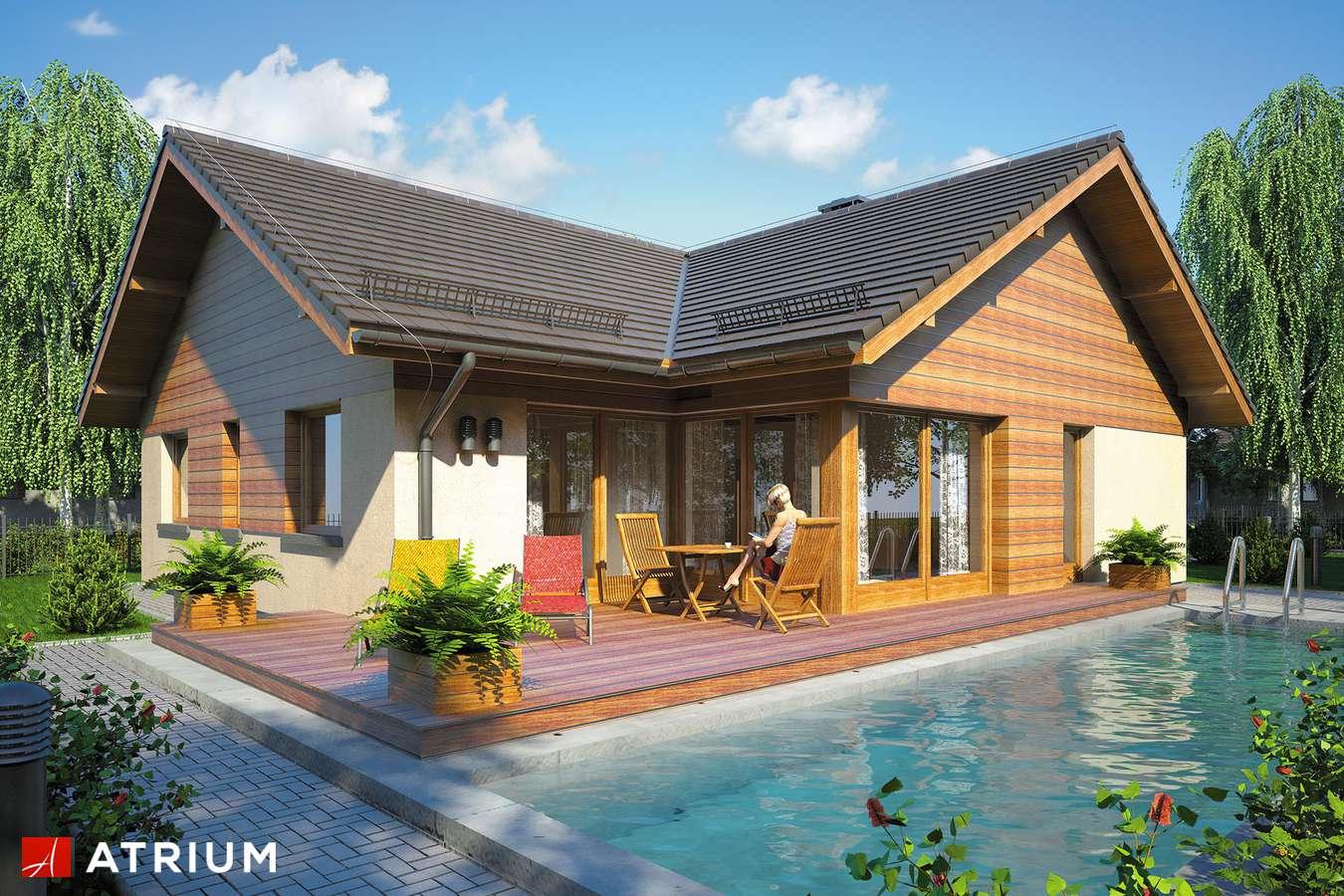 Projekty domów - Projekt domu parterowego WINSTON IV - wizualizacja 1