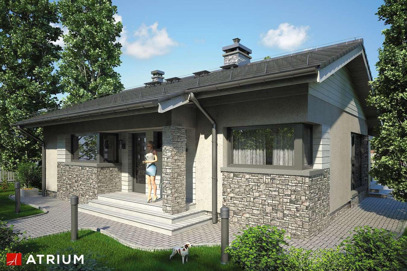 Projekty domów - Projekt domu parterowego RICARDO IX - wizualizacja 1