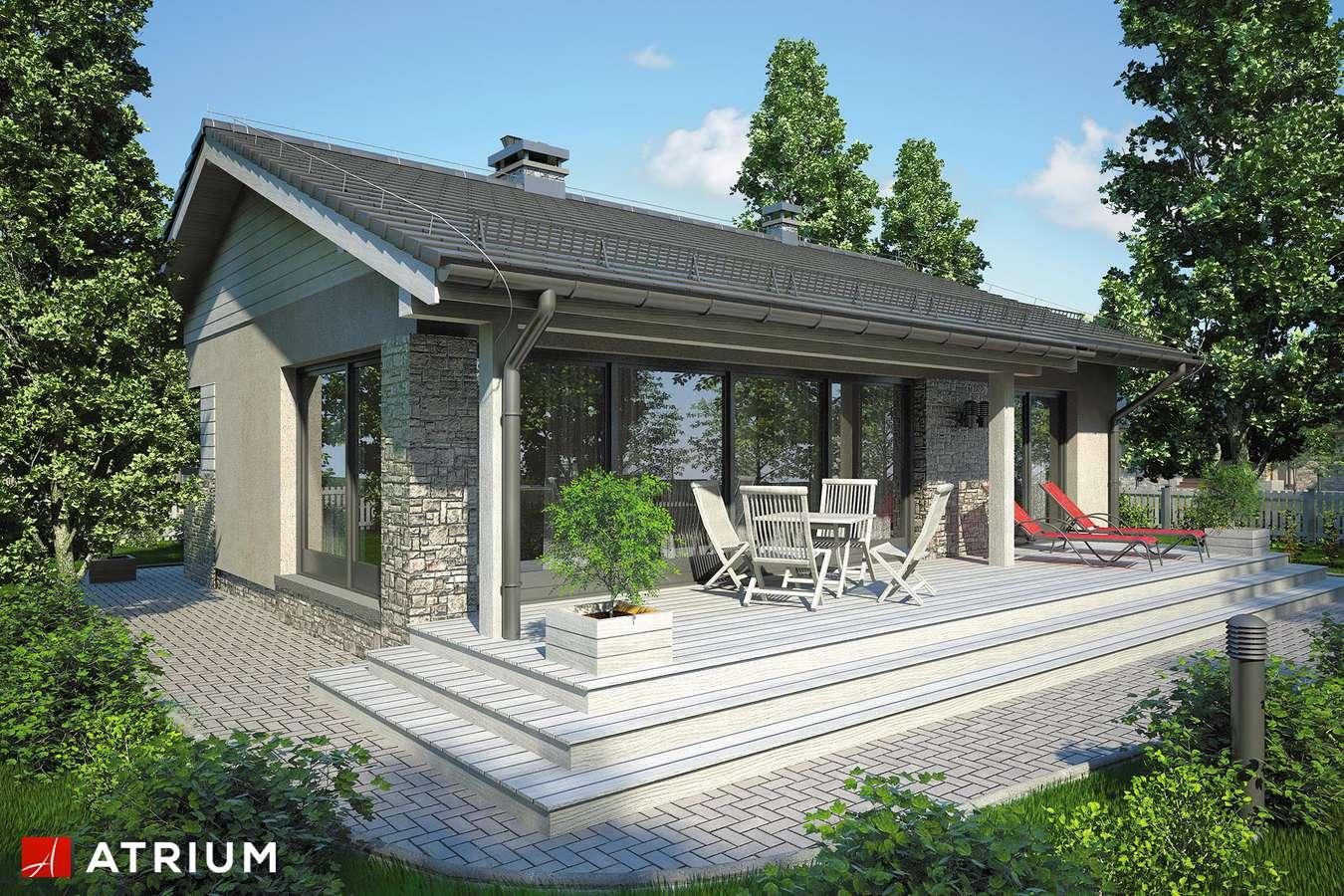 Projekty domów - Projekt domu parterowego RICARDO IX - wizualizacja 2