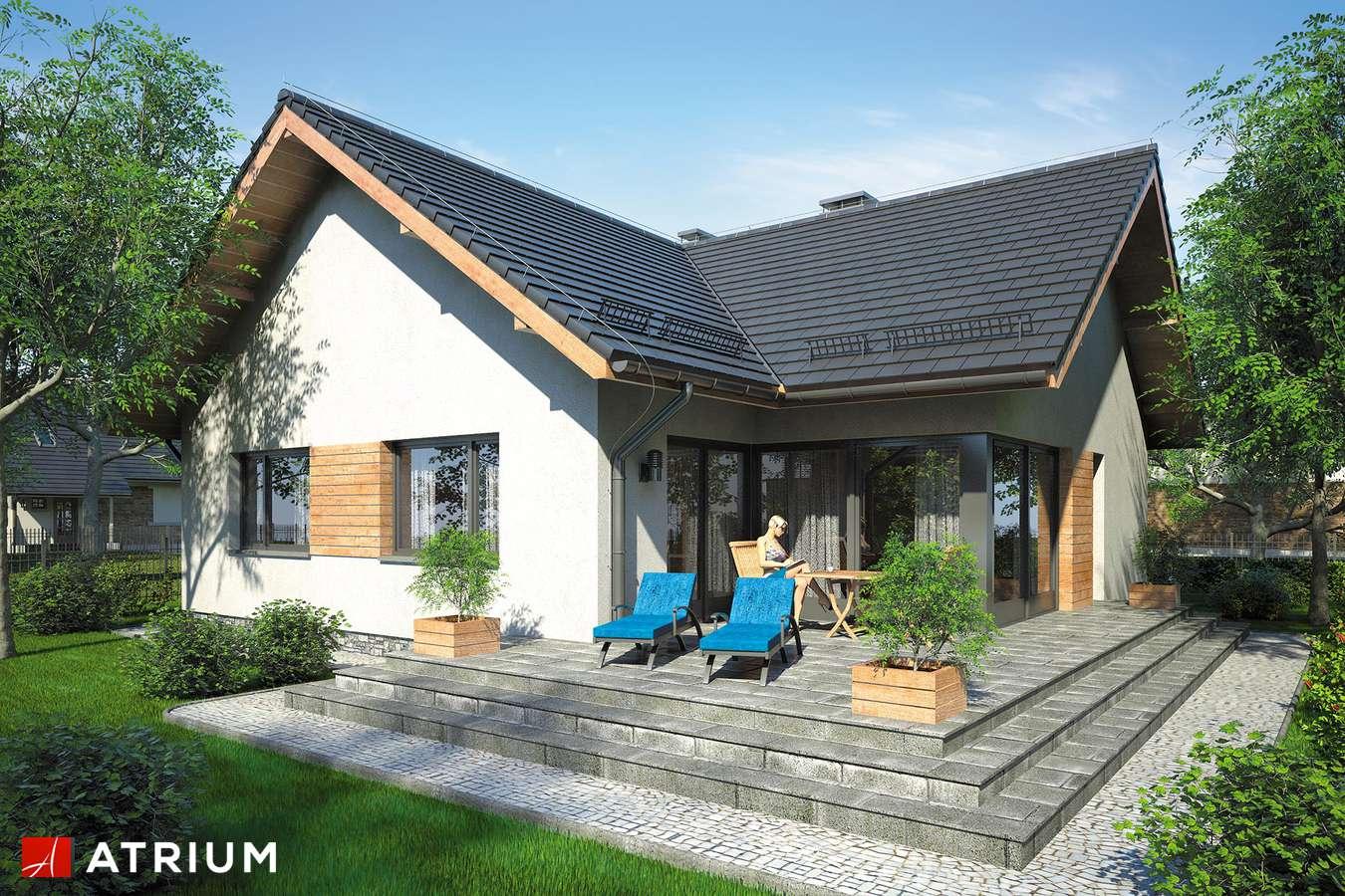 Projekty domów - Projekt domu parterowego AMBER V - wizualizacja 2
