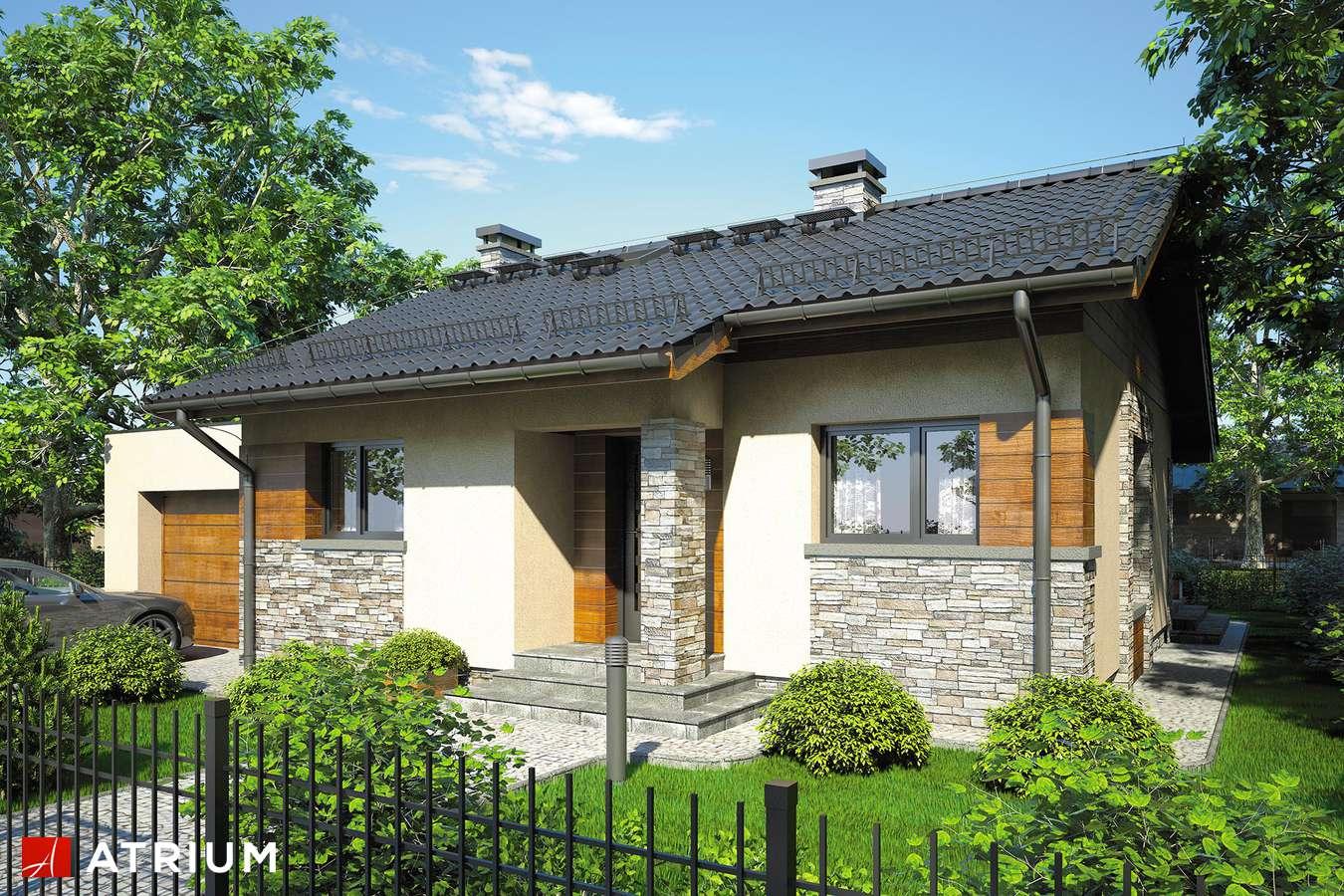 Projekty domów - Projekt domu parterowego RICARDO MINI - wizualizacja 1