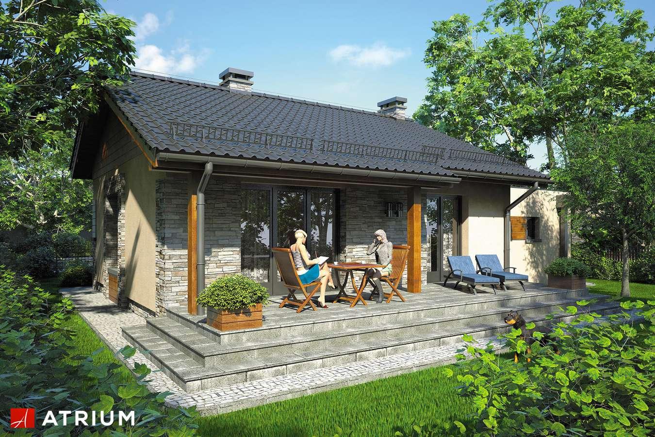 Projekty domów - Projekt domu parterowego RICARDO MINI - wizualizacja 2