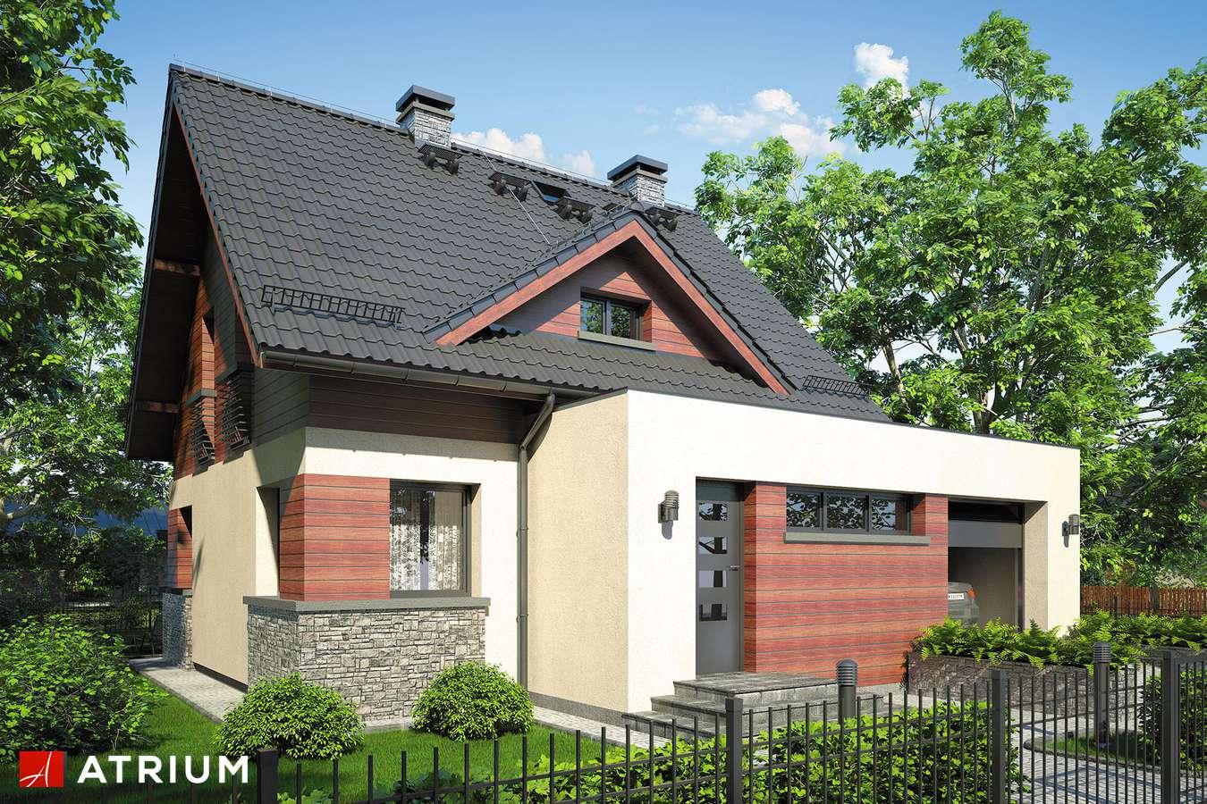 Projekty domów - Projekt domu z poddaszem ARGO - wizualizacja 1