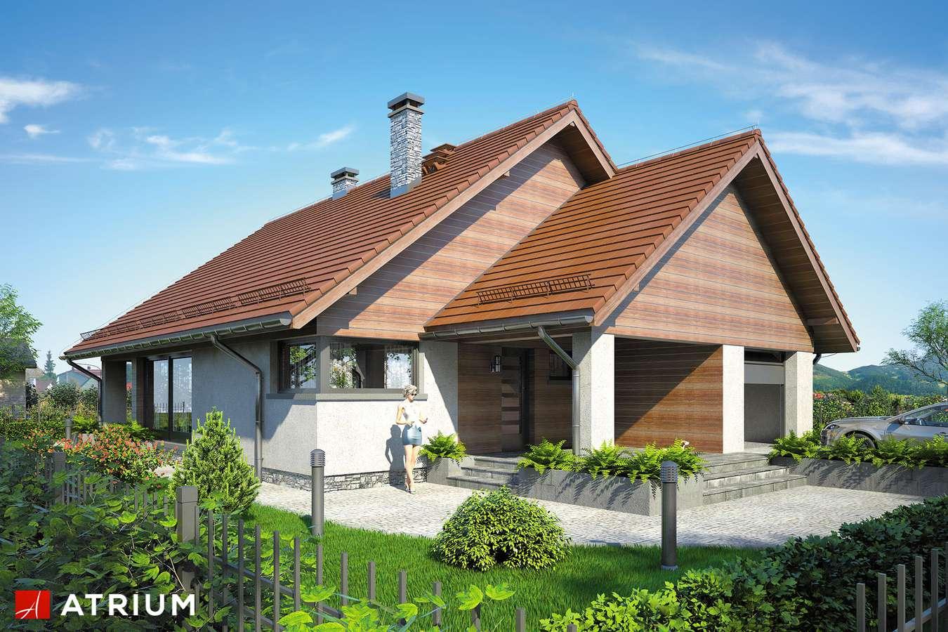 Projekty domów - Projekt domu parterowego PELIKAN VIII - wizualizacja 1