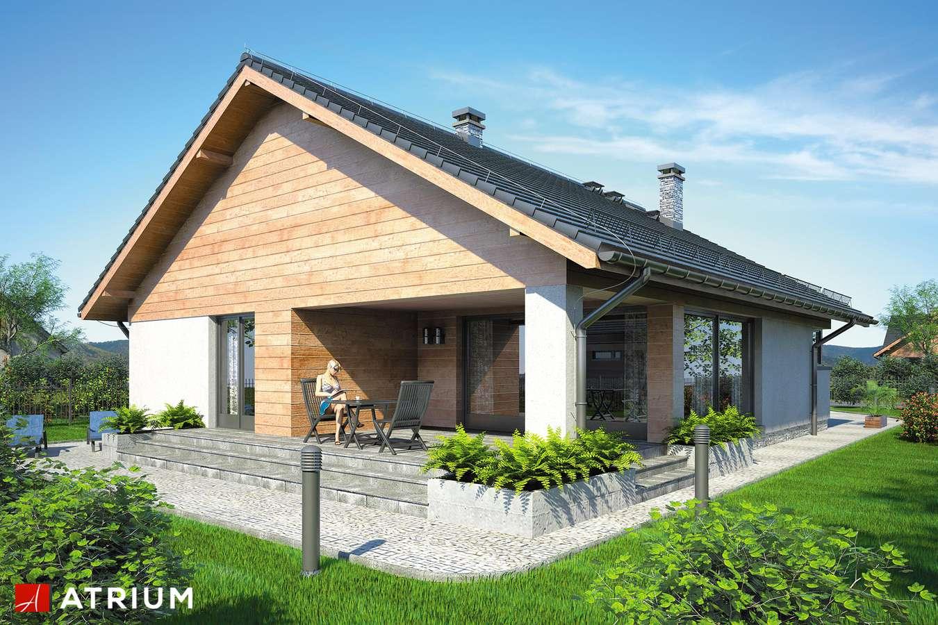 Projekty domów - Projekt domu parterowego PELIKAN IX - wizualizacja 2