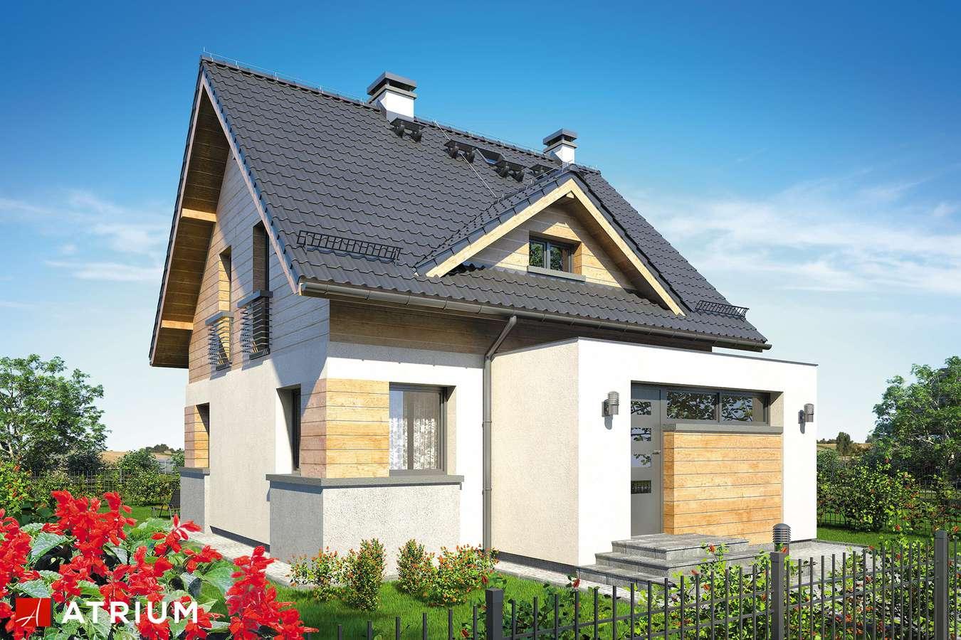 Projekty domów - Projekt domu z poddaszem ARGO II - wizualizacja 1
