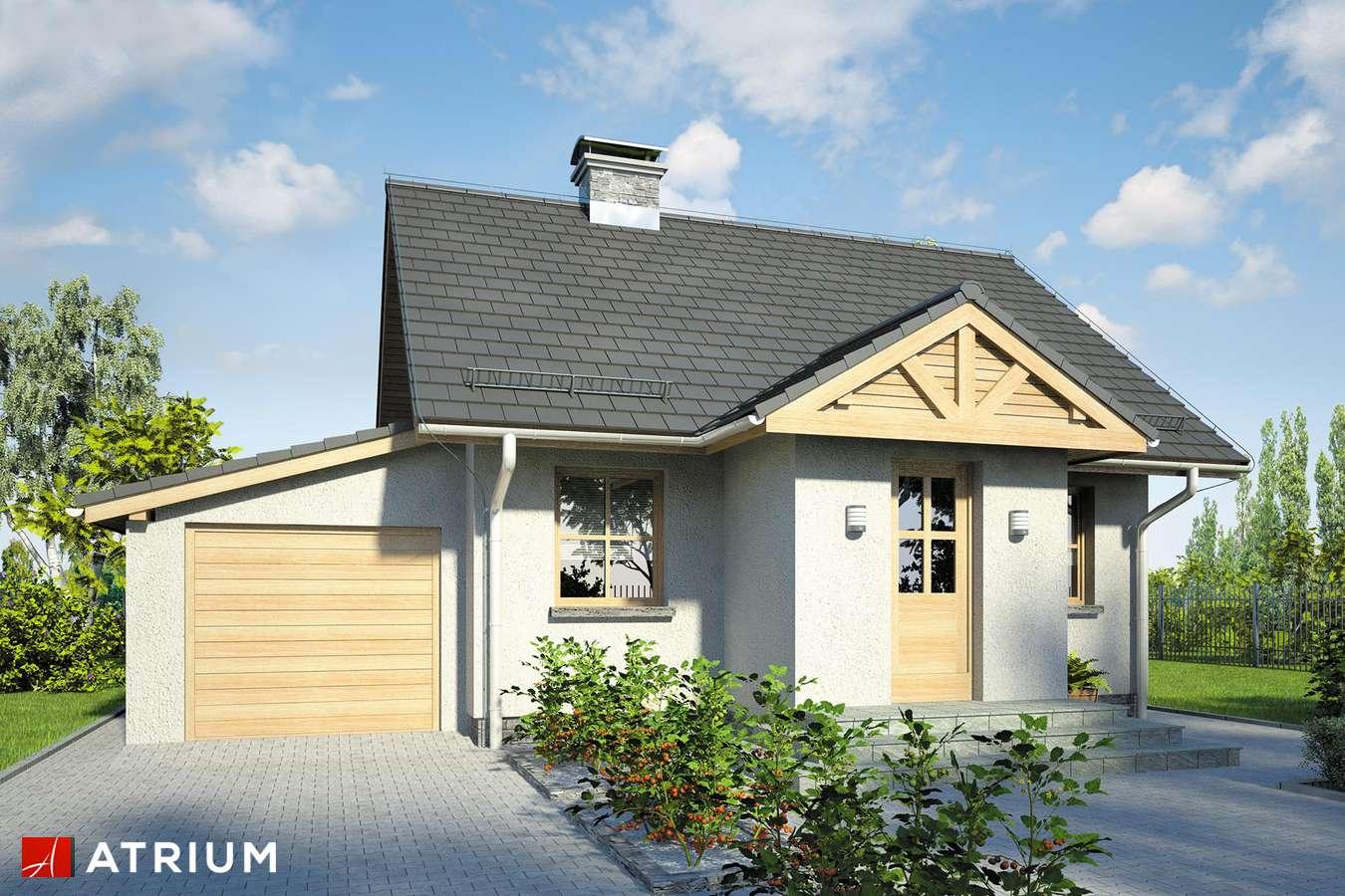 Projekty domów - Projekt domu parterowego GNIAZDKO II - wizualizacja 1