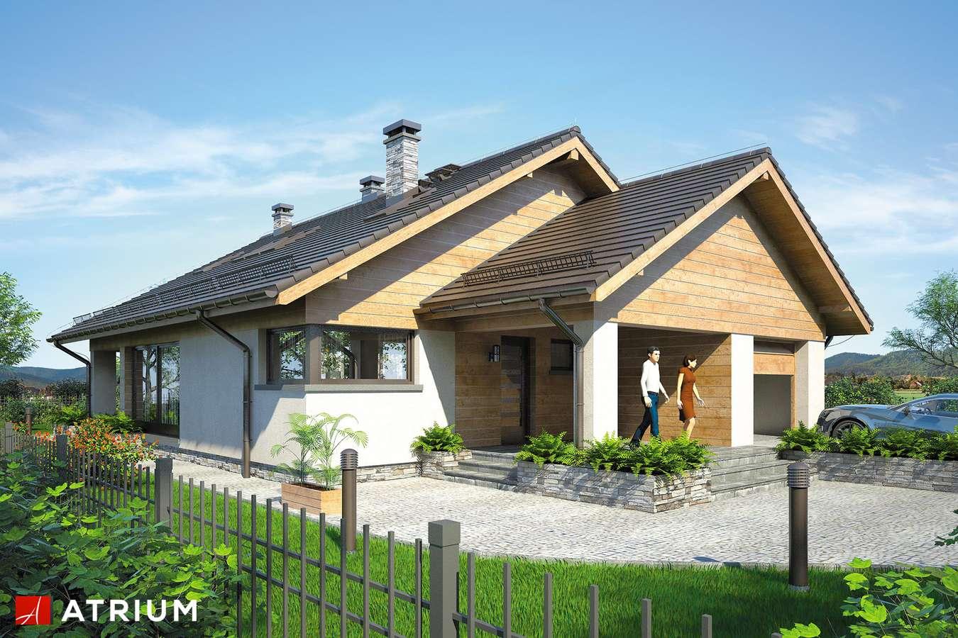 Projekty domów - Projekt domu z poddaszem PELIKAN XI - wizualizacja 1