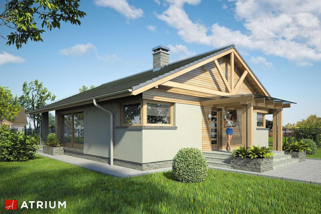 Projekty domów - Projekt domu parterowego PELIKAN XII - wizualizacja 1