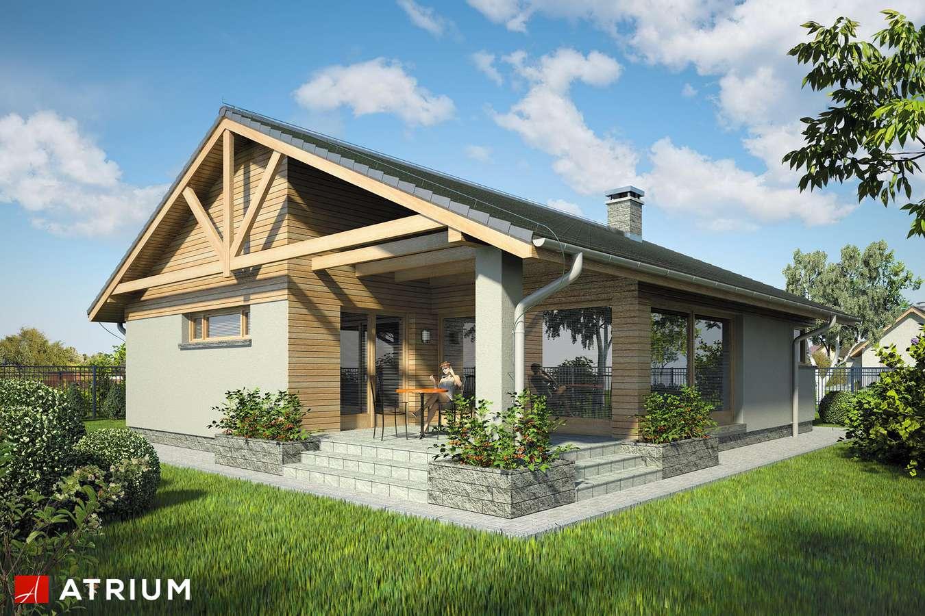 Projekty domów - Projekt domu parterowego PELIKAN XII - wizualizacja 2