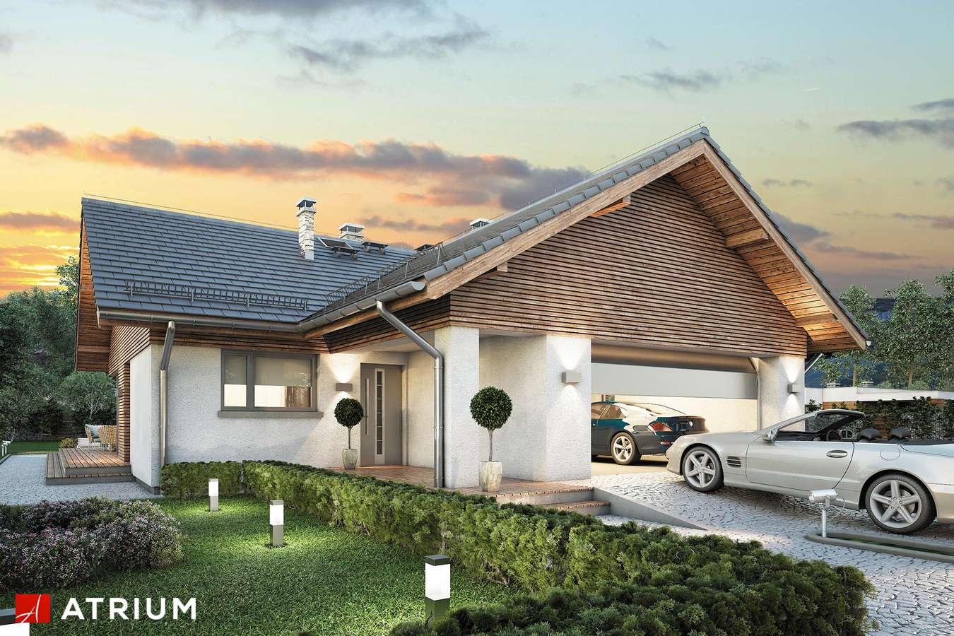Projekty domów - Projekt domu parterowego WINSTON X - wizualizacja 1