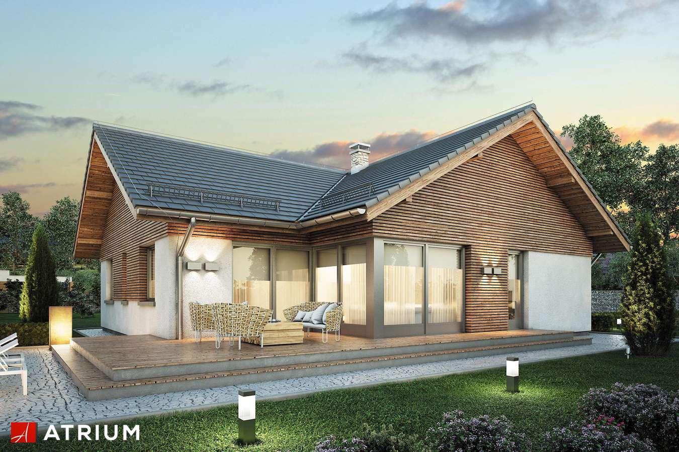 Projekty domów - Projekt domu parterowego WINSTON X - wizualizacja 2