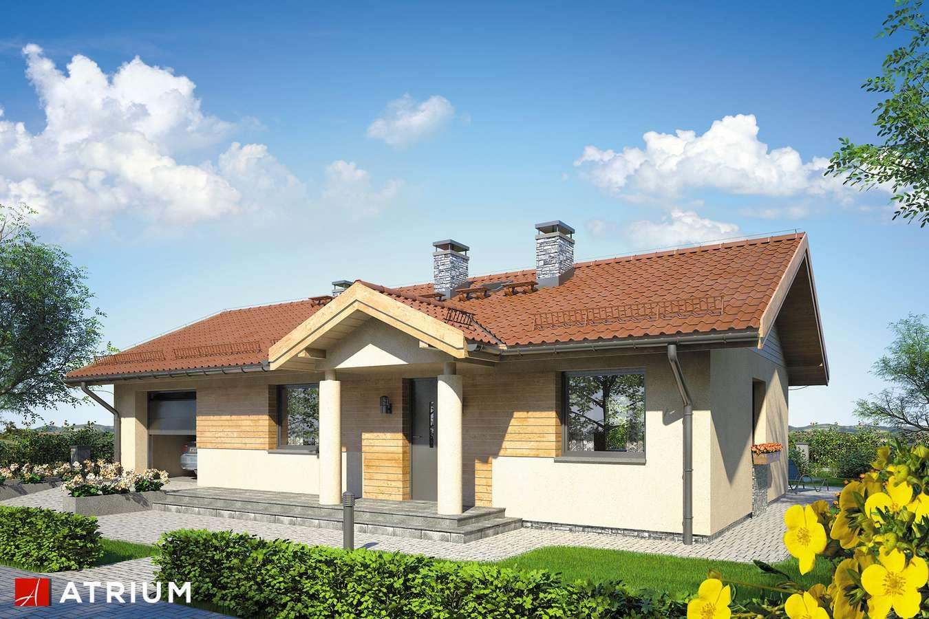Projekty domów - Projekt domu parterowego ZORBA III - wizualizacja 1