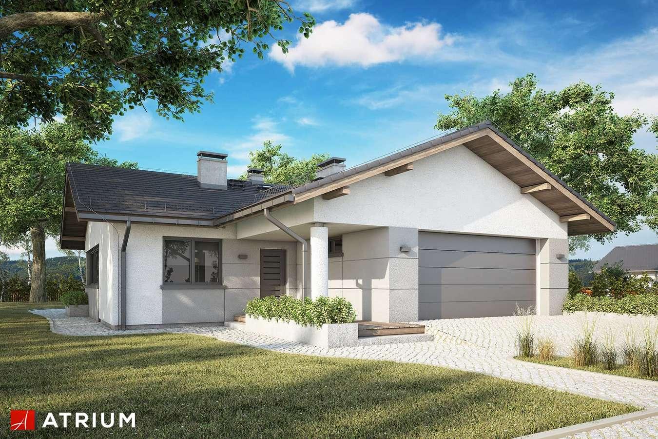 Projekty domów - Projekt domu parterowego OSTOJA VII - wizualizacja 1 - wersja lustrzana