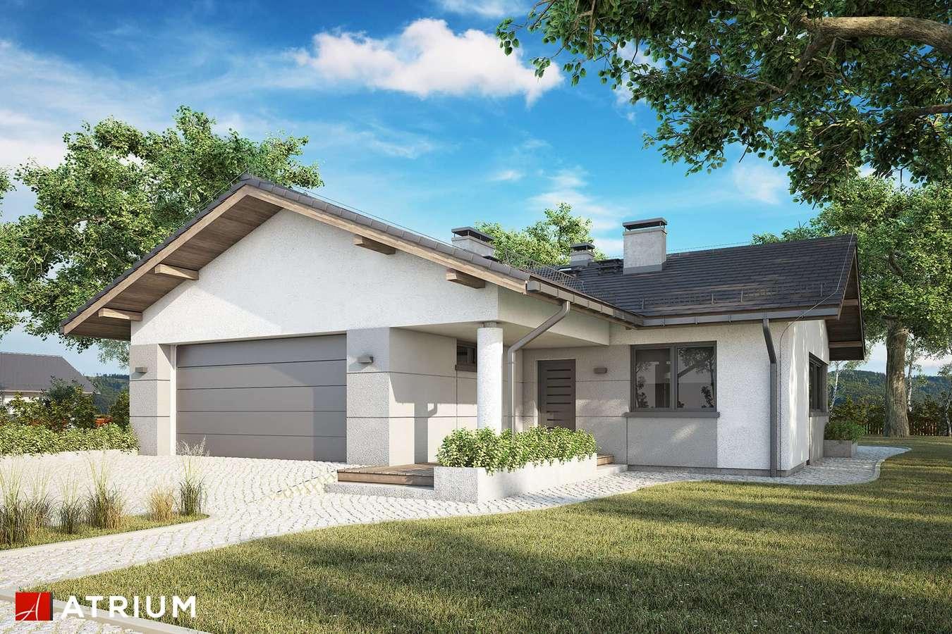 Projekty domów - Projekt domu parterowego OSTOJA VII - wizualizacja 1