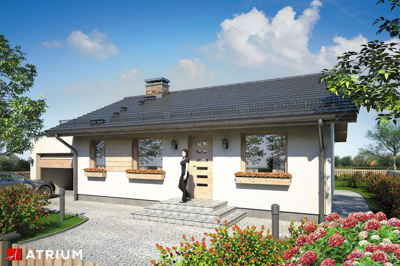 Projekty domów - Projekt domu parterowego REMIK III - wizualizacja 1