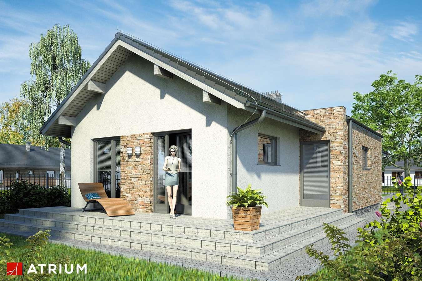Projekty domów - Projekt domu parterowego NEPTUN - wizualizacja 2 - wersja lustrzana