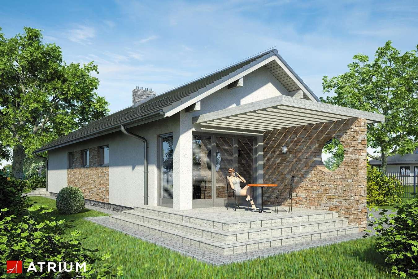 Projekty domów - Projekt domu parterowego NEPTUN - wizualizacja 1
