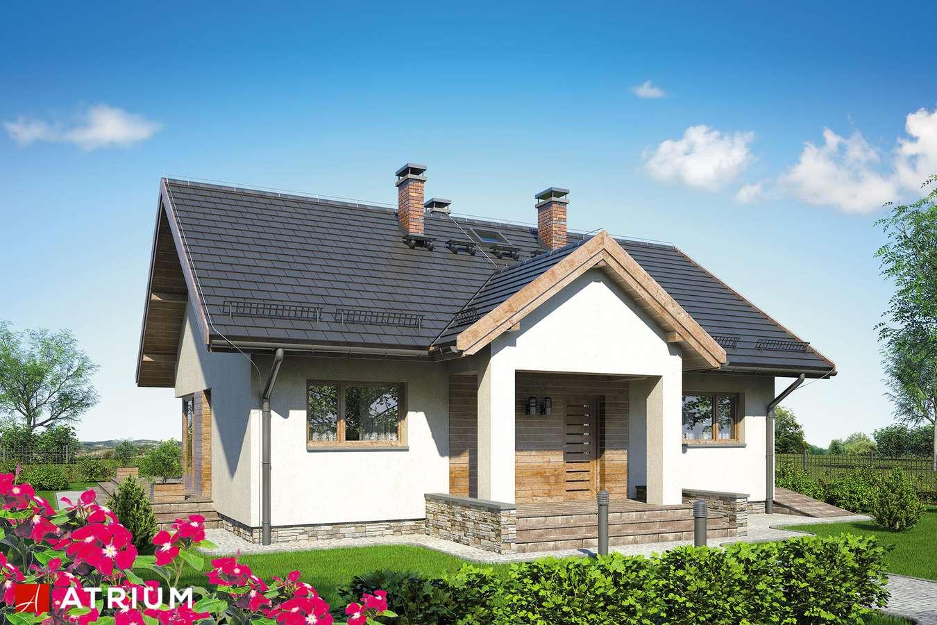 Projekty domów - Projekt domu parterowego PARMA - wizualizacja 1