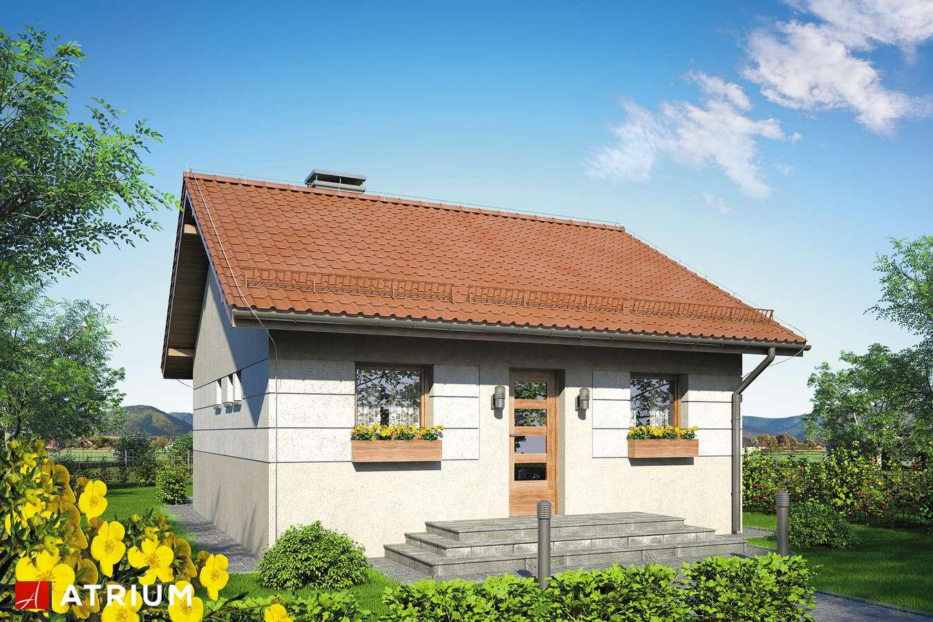 Projekty domów - Projekt domu parterowego FILEMON II - wizualizacja 1