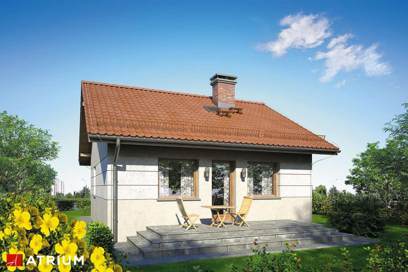 Projekty domów - Projekt domu parterowego FILEMON II - wizualizacja 2