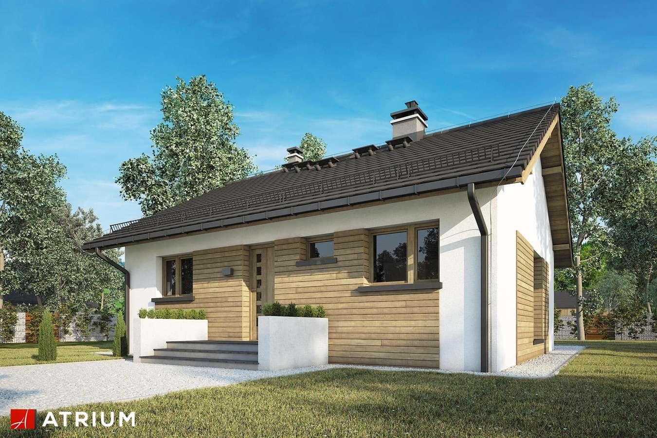 Projekty domów - Projekt domu parterowego RONALDO II - wizualizacja 1