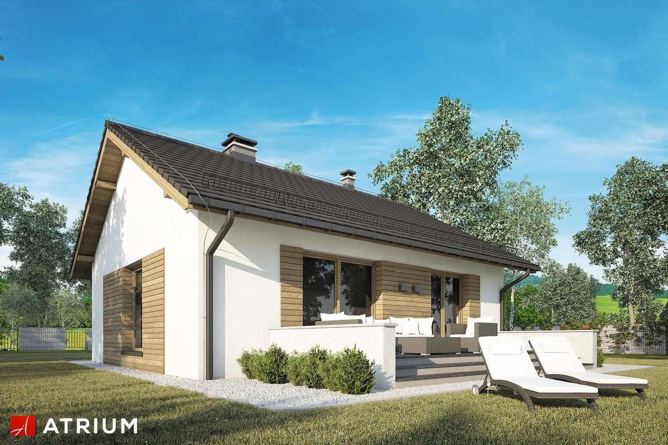 Projekty domów - Projekt domu parterowego RONALDO II - wizualizacja 2