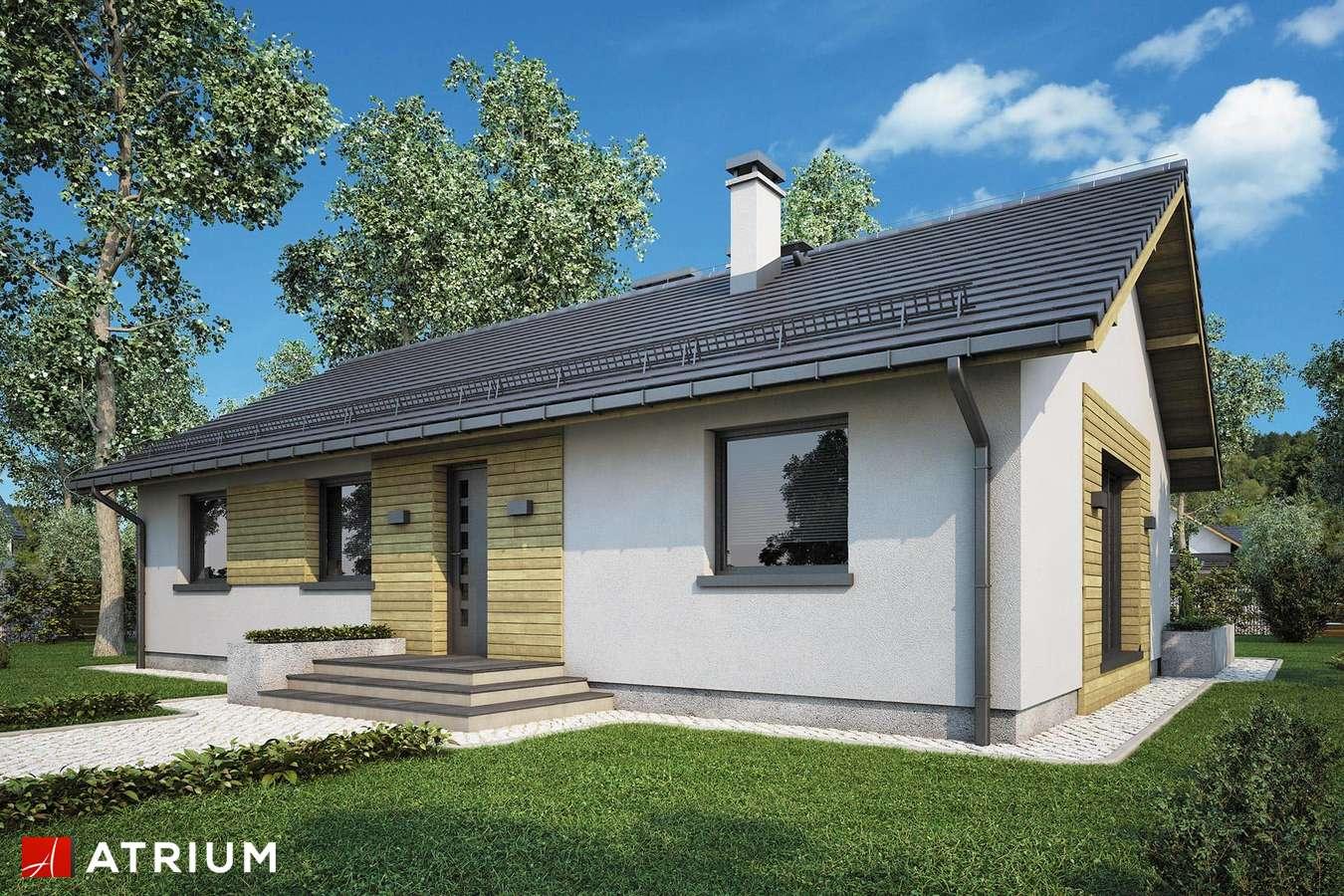 Projekty domów - Projekt domu parterowego AURORA - wizualizacja 1