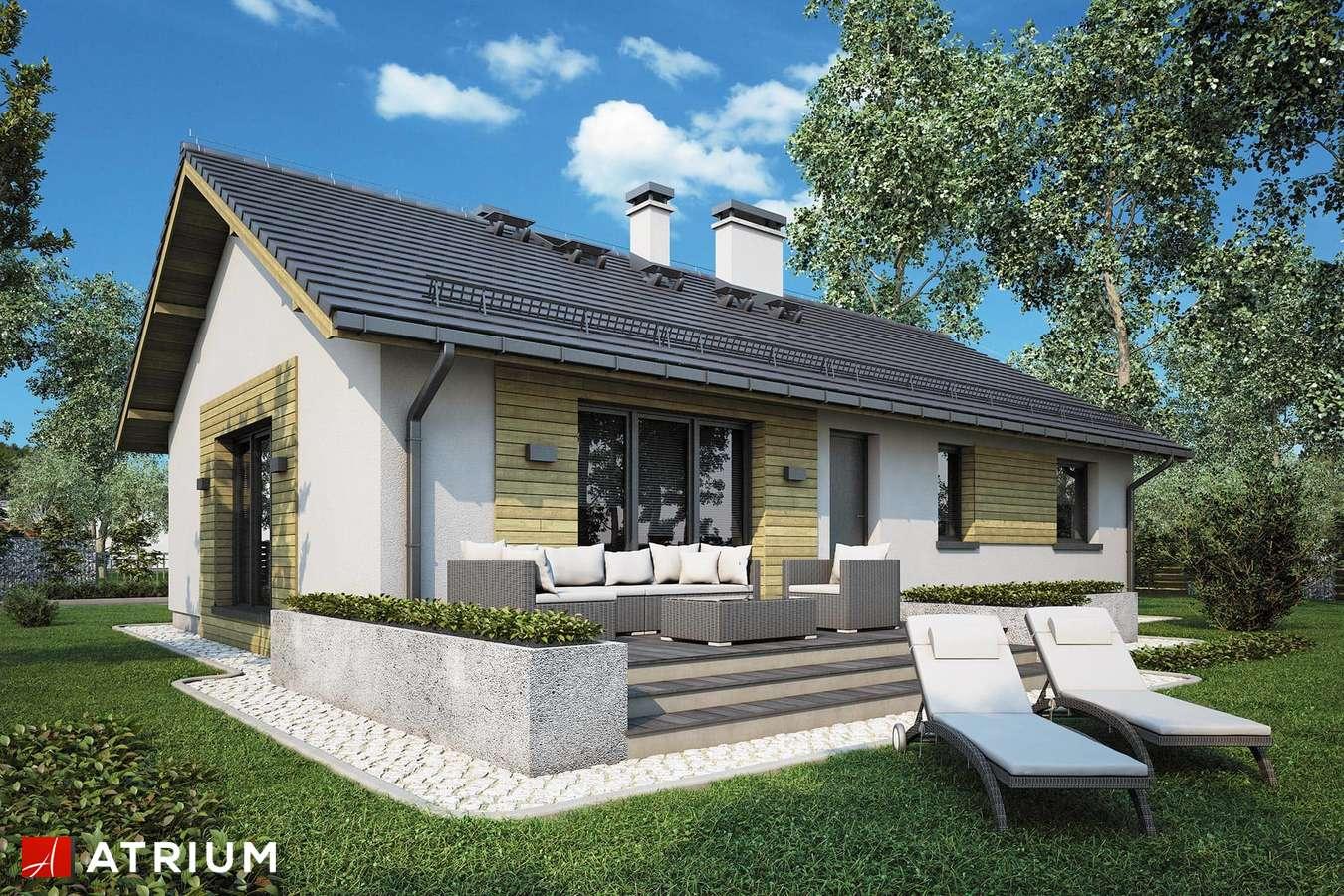 Projekty domów - Projekt domu parterowego AURORA - wizualizacja 2