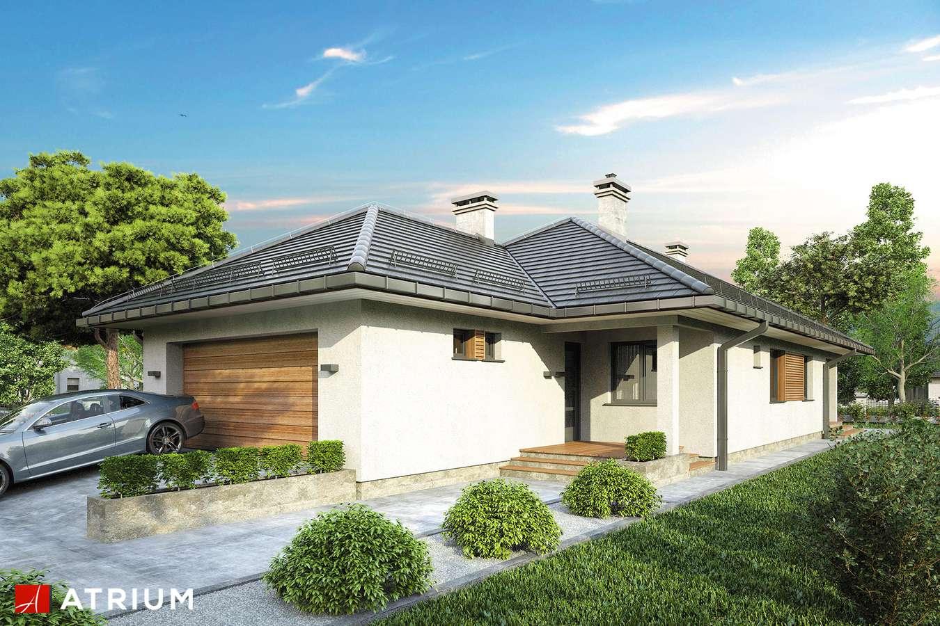 Projekty domów - Projekt domu parterowego SFINKS IV - wizualizacja 1