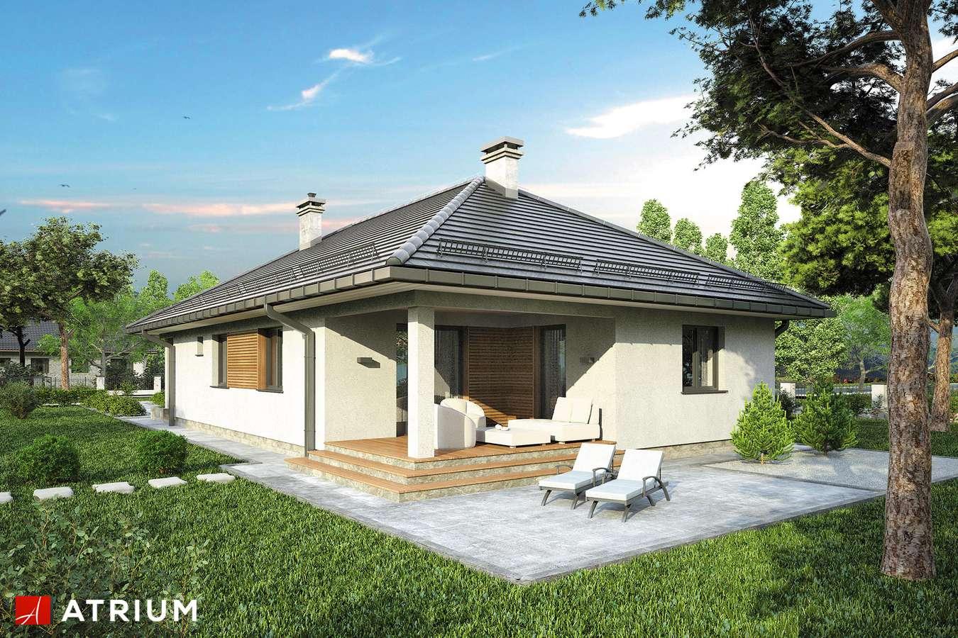 Projekty domów - Projekt domu parterowego SFINKS IV - wizualizacja 2