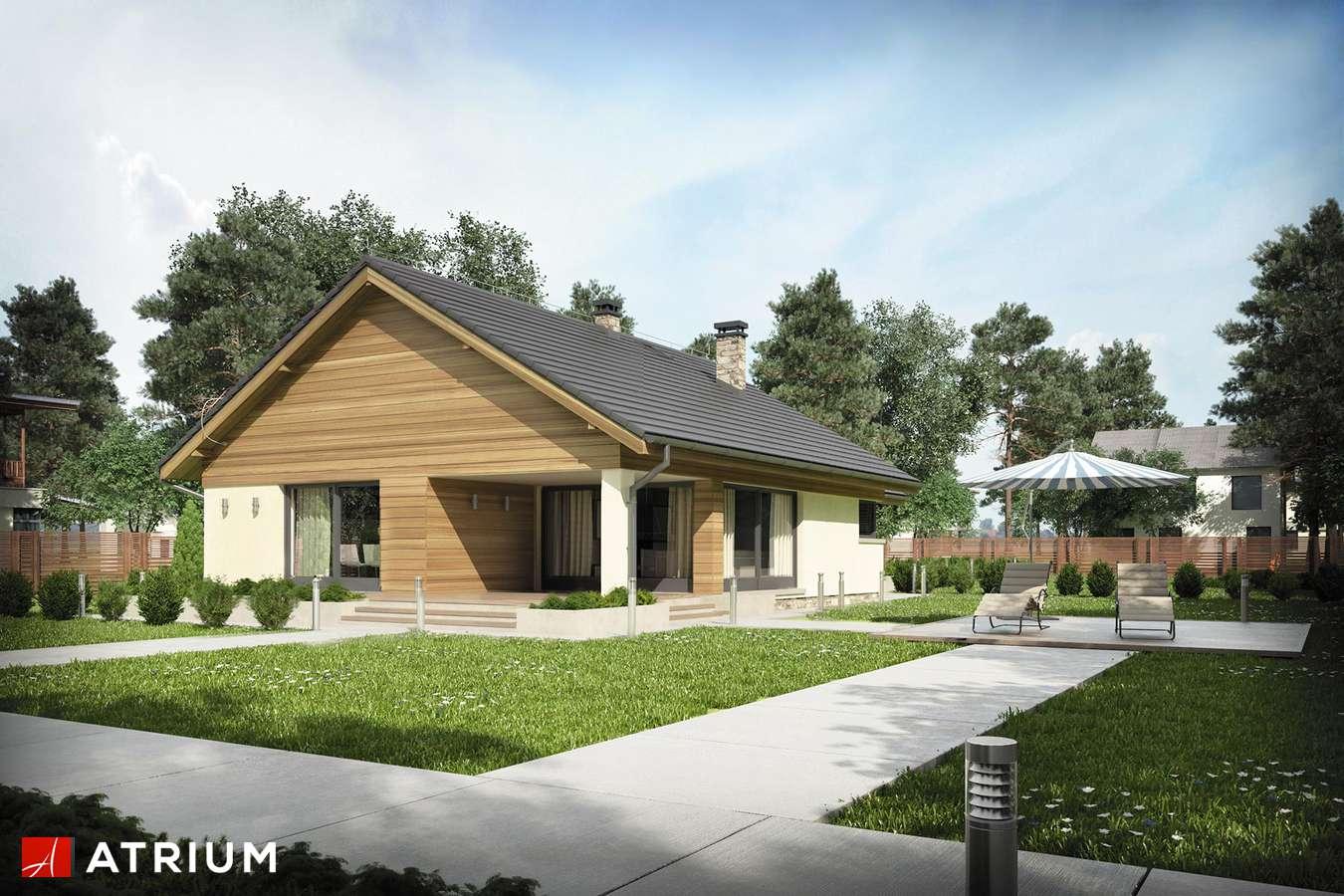 Projekty domów - Projekt domu parterowego MERLIN - wizualizacja 2