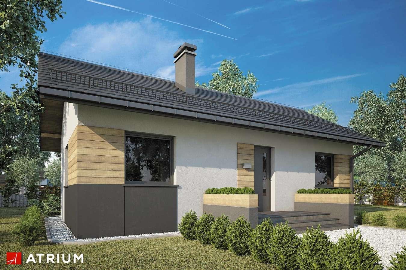 Projekty domów - Projekt domu parterowego TANGO II - wizualizacja 1
