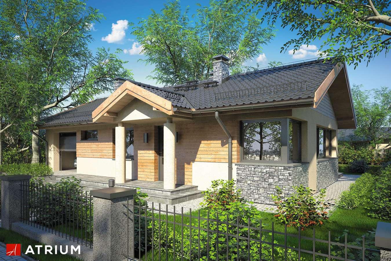 Projekty domów - Projekt domu parterowego ZORBA IV - wizualizacja 1