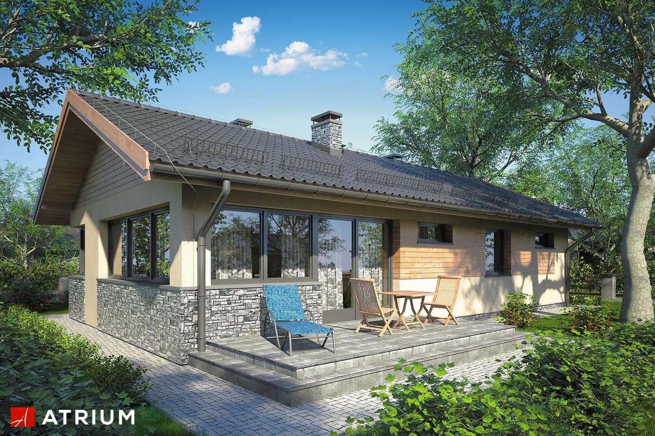 Projekty domów - Projekt domu parterowego ZORBA IV - wizualizacja 2