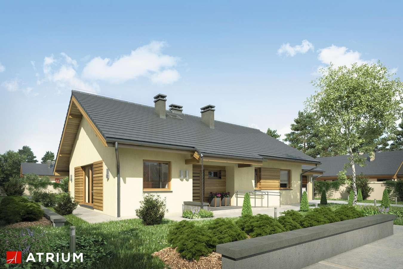 Projekty domów - Projekt domu parterowego NEO STRADA - wizualizacja 2